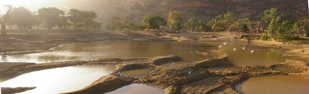Panoramica lago baobab